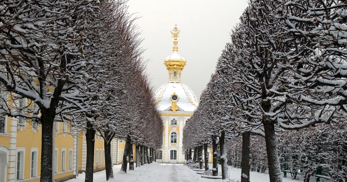Seven Wintery Things To Do In St Petersburg The